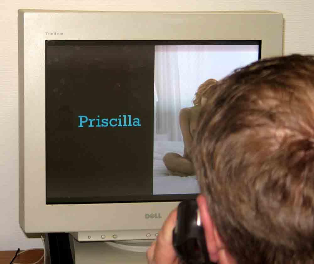 Stadsbestuur Capelle weert porno uit bib