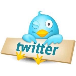 Problemen met Twitter
